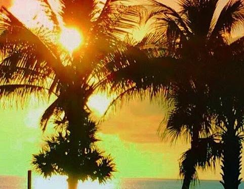 Soaking Up Sunsets
