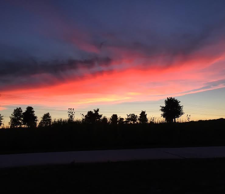 sunsetwinner