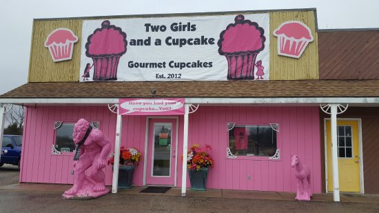 two-girls-and-a-cupcake