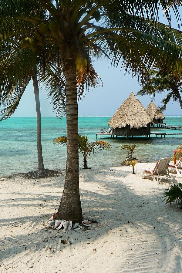 535d25279945d7a5fed2d071bea825b8--belize-honeymoon-belize-travel